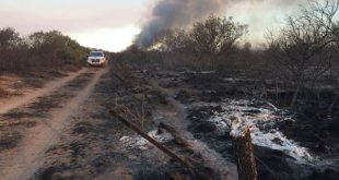 Incendios forestales: prevenciones y advertencias en zonas rurales